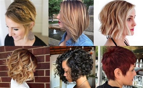short hairstyles haircuts  bobs pixie