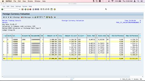 foreign currency account comparison sap foreign currency valuation tutorial free sap fi
