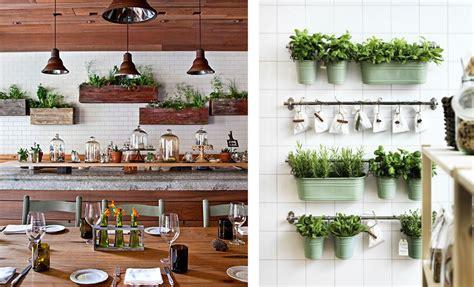 décoration plante cuisine