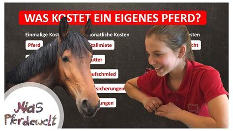 Was Kostet Ein Eigenes Pferd? Teil 2