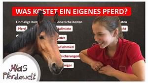 Wie Teuer Ist Ein Hausbau : was kostet ein eigenes pferd teil 2 kaufpreis pferd youtube ~ Markanthonyermac.com Haus und Dekorationen