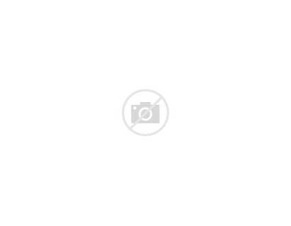 Vegetables Cartoon Funny Characters Vector Illustration Avocado