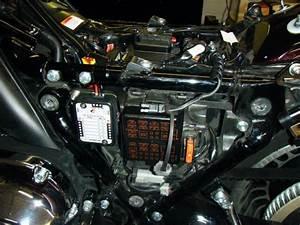 Harley Davidson Fuse Box : harley davidson sportster why aren 39 t rear lights working ~ A.2002-acura-tl-radio.info Haus und Dekorationen
