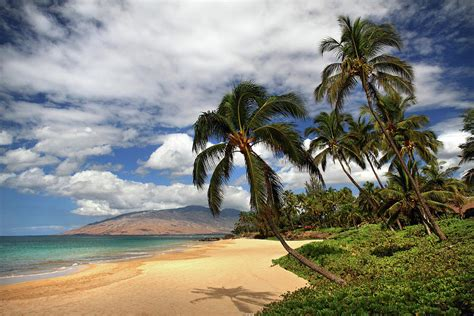 tropical landscapes kamaole tropical landscape photograph by pierre leclerc photography