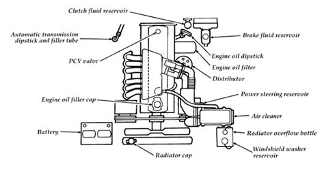 Ford F 150 Distributor Diagram by 1986 Ford F150 Engine Diagram Automotive Parts Diagram