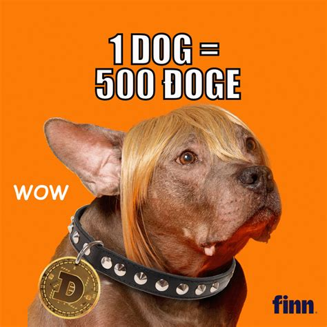 You should store dogecoin in a wallet where you control the private keys and keep the. Pet food brand Finn to boost Dog adoptions 'to the moon ...