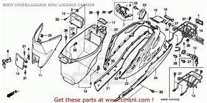 Honda Sk50m Dio 1992  N  Canada Body Cover  Luggage Box