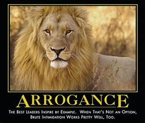 Fierce Lion Quote   Quote Addicts