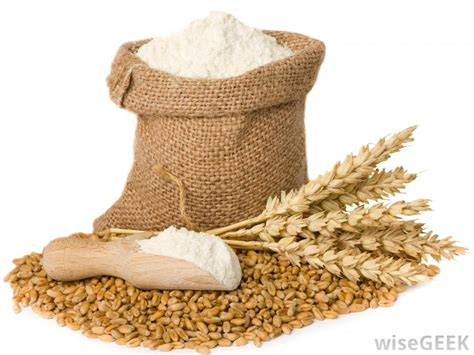 wheat flour what is white whole wheat flour with pictures