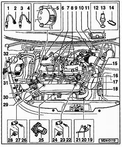 2002 Vw Jetta 2 0l Engine Diagram  2002  Free Engine Image