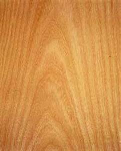Feuchtes Holz Erkennen : tischlerei fischer erfurt kerspleben ~ Whattoseeinmadrid.com Haus und Dekorationen