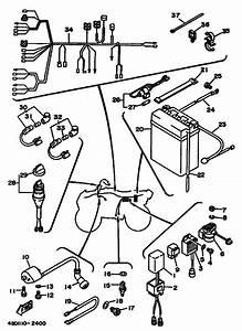 Electrical 1 For 1992 Yamaha Timberwolf 250
