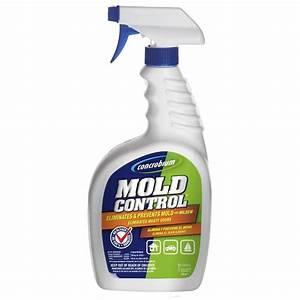 Shop 32-oz Liquid Mold Remover at Lowes com