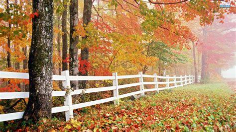 nature wallpaper autumn free 1 desktop wallpapers hd 4k high definition windows 10 backgrounds