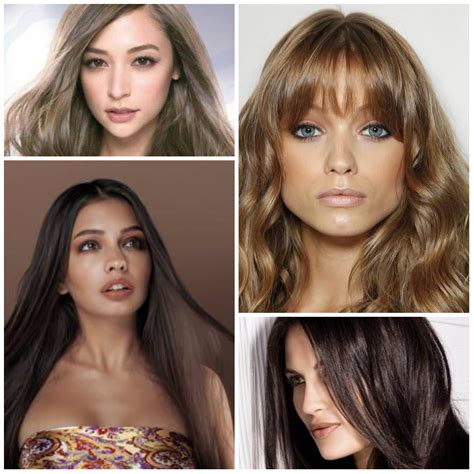 Best Shades Of Brown Hair Color by Different Shades Of Brown Hair Color Best Hair Color