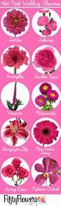 The 25+ best Pink flower names ideas on Pinterest | Blush ...
