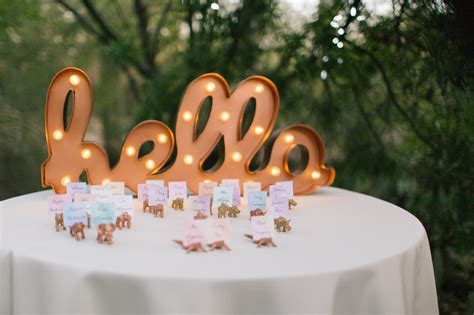 how much does zoo lights cost in phoenix sam josh 39 s phoenix zoo wedding alyssa cbell photography
