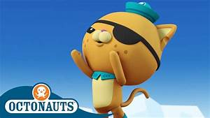 Octonauts - a Help From a Humpback Whale | Cartoons for ...