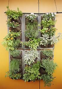 Vertical, Garden, Diy, Vertical, Garden, Ideas, And, More