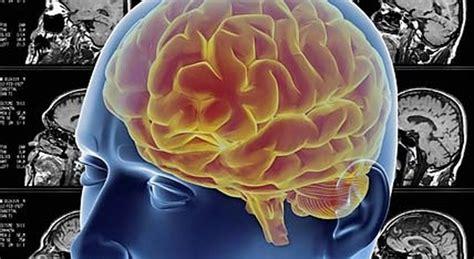 tumore al cervello e alimentazione tumore al cervello un algoritmo prevede la gravit 224 della