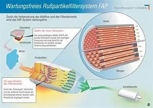 Dpf Reinigen Kosten : fap partikelfiltersystem ~ Kayakingforconservation.com Haus und Dekorationen