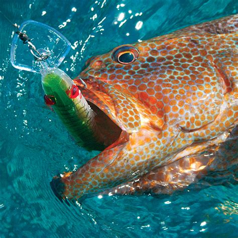 game lure trolling mirrolure grouper series lures deep fishing bait rod saltwater fish catching clothing tackle thelongfin tools