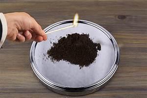 Welchen Geruch Mögen Wespen Nicht : fotostrecke 10 tipps gegen die wespenplage wetteronline ~ Whattoseeinmadrid.com Haus und Dekorationen