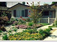 Sustainable Landscape Design for residential lawns