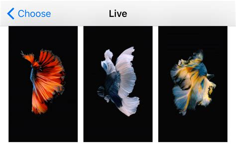 Anime Live Wallpaper Iphone 8 by Live Wallpaper Iphone 8 Plus Anime