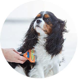 hair shedding solutions furminator hair deshedding edge for dogs large