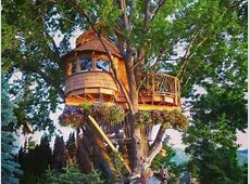 10 Gorgeous Tree Houses That Will Make You Want To Live In