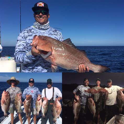 gulf grouper mexico fishing charters bay pete st flat