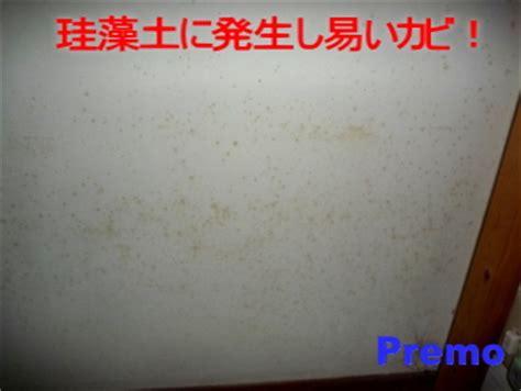 珪藻土 カビ