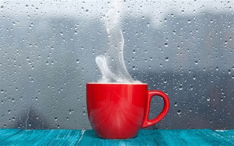 hot tea red mug good morning wishes hd wallpapers rocks