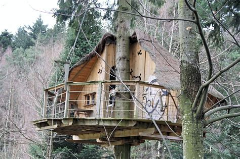 A Treehouse Village In The Heart Of Ardèche  Bored Panda