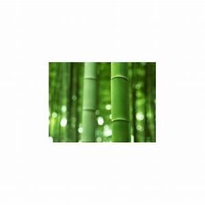 Bambou Noir Prix : hydrolat de bambou noir 200ml ~ Teatrodelosmanantiales.com Idées de Décoration