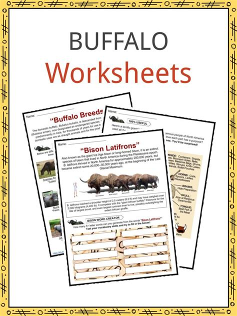 buffalo facts worksheets information  kids