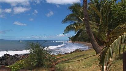 Screensavers Tropical Beach Screensaver Background Desktop Scenes