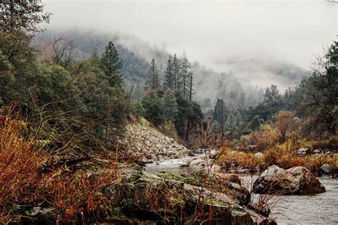 uecretsiz resim nehir ahsap su doga manzara agac