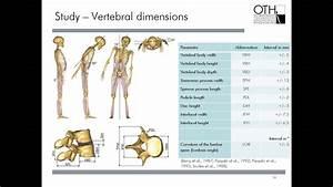 Webinar  Spine Parameter  The Influence Of Vertebral