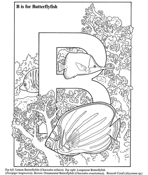 discount dover coloring books coloring pages