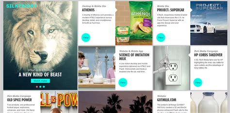 play  cards  exploring  cards trend  web design