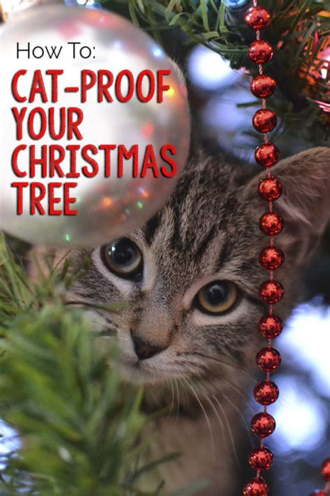 how to cat proof your christmas tree ebay