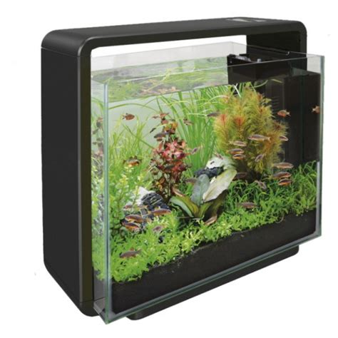 aquarium 40 litres dimensions crafts