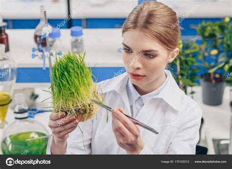 beautiful biologist with grass — Stock Photo ...