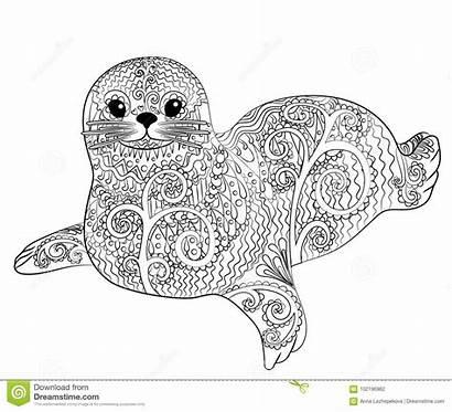 Zentangle Seal Coloring Belek Adult Vector Illustration