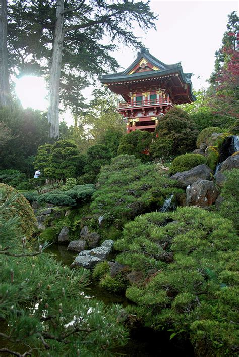 japanese tea garden pagoda photograph by david crockett
