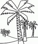 Palm Coloring Tree Trees Pages Coconut Drawing Outline Lot Palms Line Date Sheets Easy Beach Ikids Getdrawings Printable Clipart Clipartbest sketch template