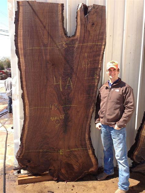 massive black walnut slab  east texas walnut slab
