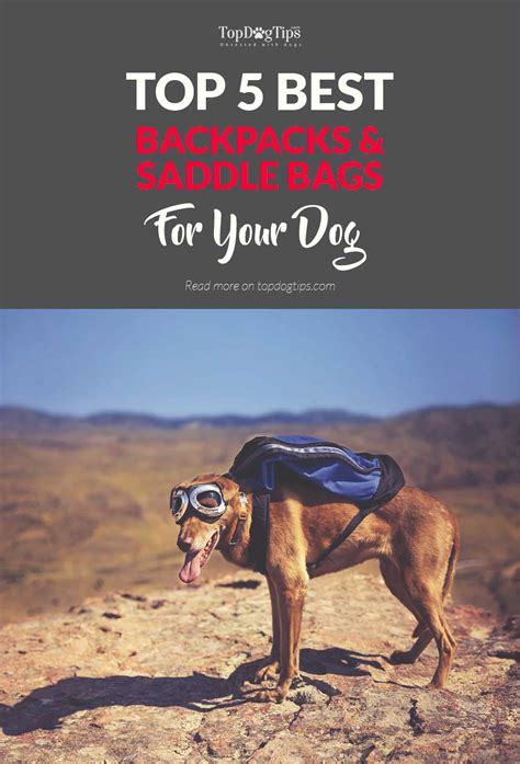 dog saddle bags backpacks dogs spending bring outdoors supplies ll re water food